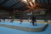 Unihockey_FansLHC_003