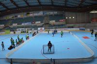 Unihockey_FansLHC_008