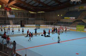 Unihockey_FansLHC_013
