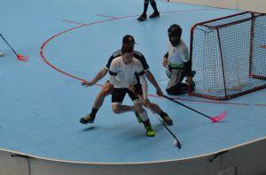 Unihockey_FansLHC_015