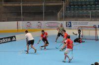 Unihockey_FansLHC_016