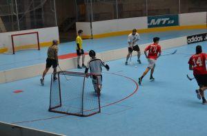 Unihockey_FansLHC_017