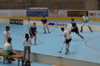 Unihockey_FansLHC_019