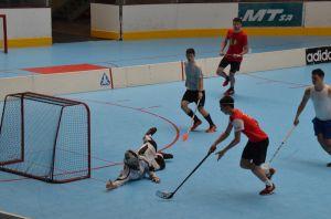 Unihockey_FansLHC_020