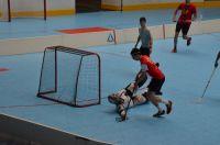 Unihockey_FansLHC_021