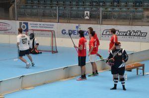 Unihockey_FansLHC_022