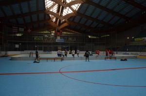 Unihockey_FansLHC_025