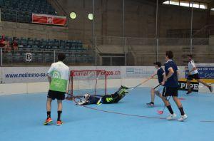 Unihockey_FansLHC_028