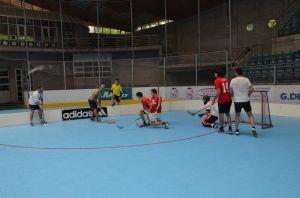 Unihockey_FansLHC_034