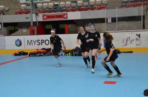 Unihockey_FansLHC_036