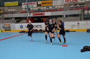 Unihockey_FansLHC_037