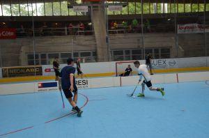 Unihockey_FansLHC_043