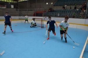 Unihockey_FansLHC_045