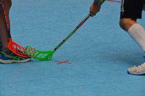 Unihockey_FansLHC_053