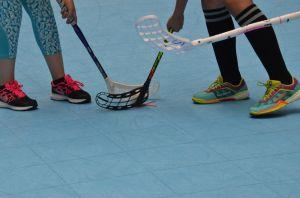 Unihockey_FansLHC_054