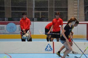 Unihockey_FansLHC_060