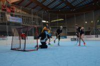 Unihockey_FansLHC_066