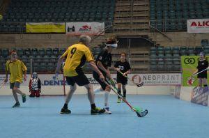 Unihockey_FansLHC_069