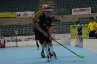Unihockey_FansLHC_070