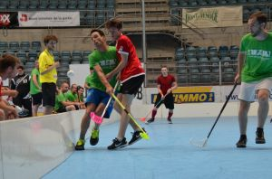 Unihockey_FansLHC_071