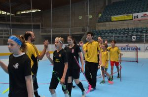 Unihockey_FansLHC_082