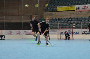 Unihockey_FansLHC_087