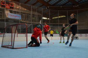 Unihockey_FansLHC_089