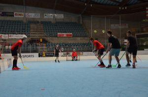 Unihockey_FansLHC_090