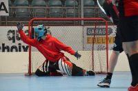 Unihockey_FansLHC_094