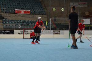 Unihockey_FansLHC_095