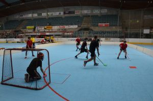 Unihockey_FansLHC_096