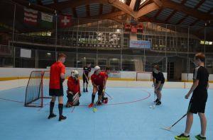 Unihockey_FansLHC_098