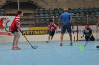 Unihockey_FansLHC_100