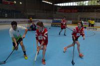 Unihockey_FansLHC_120