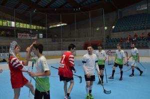 Unihockey_FansLHC_124