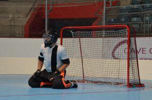 Unihockey_FansLHC_160