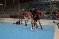 Unihockey_FansLHC_161