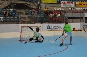 Unihockey_FansLHC_185