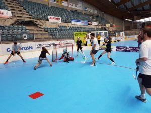 Unihockey_FansLHC_205